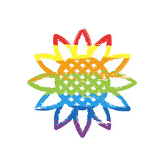 Sunflower, plant. Nature icon. Drawing sign with LGBT style, seven colors of rainbow (red, orange, yellow, green, blue, indigo, violet