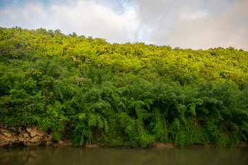 mountain slope on jungle river