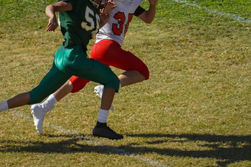 Football players running for the play