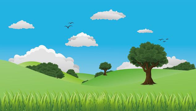 自然豊かな丘のイラスト