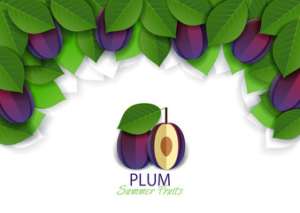Vector paper cut ripe plum fruit background, frame