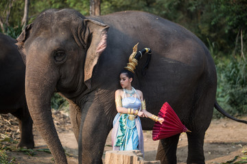 Thai girl with elephant
