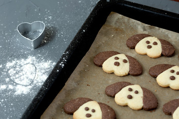 Cookies in the form of a dog on a baking sheet. Cooking with children.