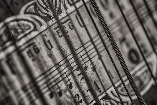 Musikintstrument Zither Makro