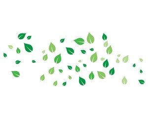 flying leaves vector