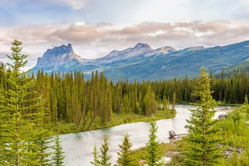 Wall Mural - View of the Canadian rockies massif with the Bow River