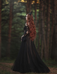 A beautiful gothic princess with pale skin and very long red hair in a black crown and a black long dress walks in a misty fairy-tale autumn forest. The costume of the dark queen. Back view.