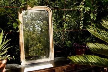 reflet de verdure
