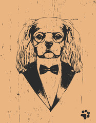 Portrait of Cavalier King Charles Spaniel in sui, hand-drawn illustration
