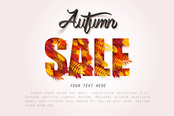 Paper art of Autumn sale calligraphy lettering on fallen leaves