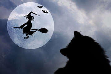 Halloween background with cat, bats, full moon and flying witch