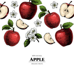 Vector frame with apples. Hand drawn. Vintage style