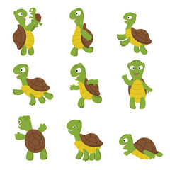 Cute turtle. Green tortoise child in various poses. Vector characters isolated. Illustration of green character with shell, turtle happy