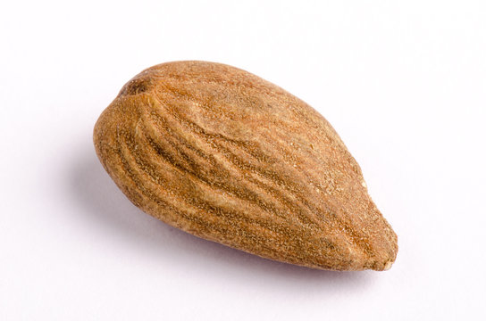 Organic Marcona almond with skin on white background