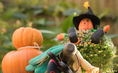 Garden tools, gloves, pumpkins and image of happy Halloween farmer are in autumn garden. Concept: orange cheerful mood of autumn Halloween & gardening.