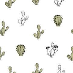 Vector illustration. Element of seamless pattern. Cactus pen style drawing.