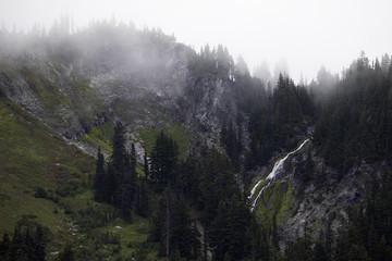 Paradise, Mount Rainier National Park, WA, USA.
