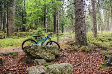 Mountainbike Rad Radweg im Wald