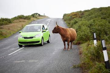 Turistas en el Parque Nacional de Dartmoor