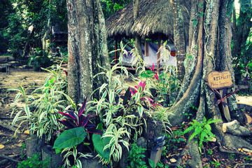 Forest cottage in Minca, Colombia, South America