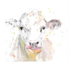 Vector illustration of a watercolor muzzle cow. Cow isolated on white background. Frontal head of a cow.