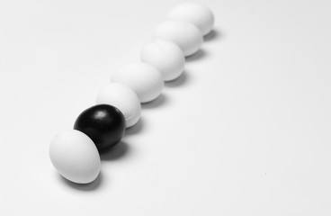 on a white background, white eggs in a row and one black symbolizing diversity, separation, concretion and leadership