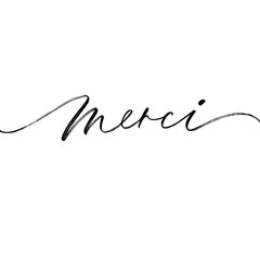 Merci phrase. Thank you in French. Modern vector brush calligraphy.
