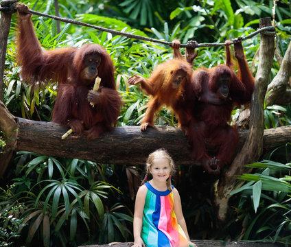 Kids watch monkeys in zoo. Child and animals.
