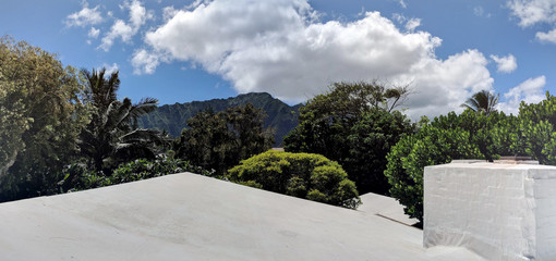 Tropical Trees, Rooftop, and Koolua Mountains in the distance