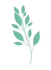 beautiful leaf plant isolated icon