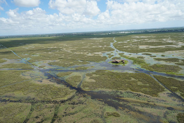 Everglades National Park - Wetland Marsh Environment
