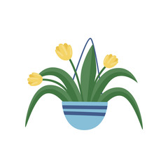 Hanging garden pot with yellow tulips. Beautiful spring flowers. Flat vector element for home decor