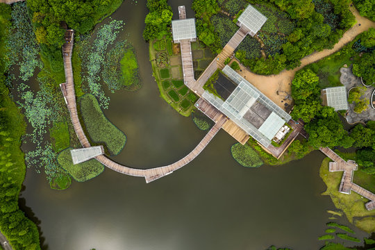 Top down view of wetland park
