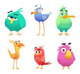 Cartoon funny birds. Faces of cute animals colored baby eagles happy birds. Vector clipart characters isolated. Animal bird happy, character funny different illustration