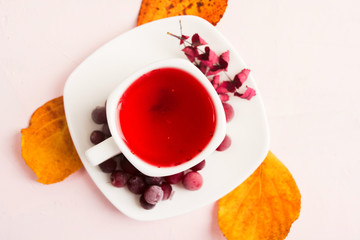Autumn composition with red healthy cranberry hot drink and dry decoration leaves over pink background