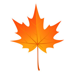 Autumn maple leaf icon. Flat illustration of autumn maple leaf vector icon for web design