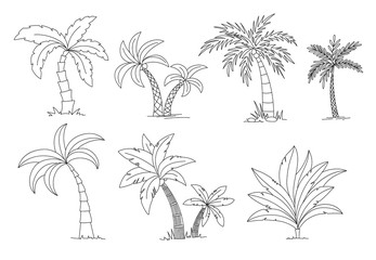 Palm trees coloring book. Beautiful vectro palma tree set vector illustration