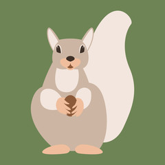 squirrel  with nut  vector illustration flat style front