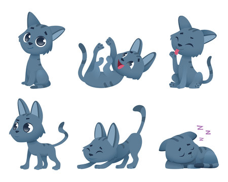 Cute baby cats. Funny little domestic animals toy kitten vector cartoon characters in various poses. Illustration of cat animal, kitten pet domestic