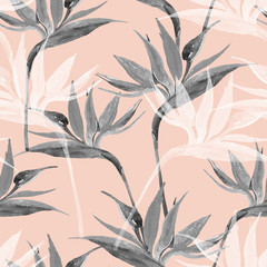 Exotic flowers in monochrome colors, transparent on pastel background