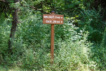 The wood trail sign in the weeds on the trail of forest.