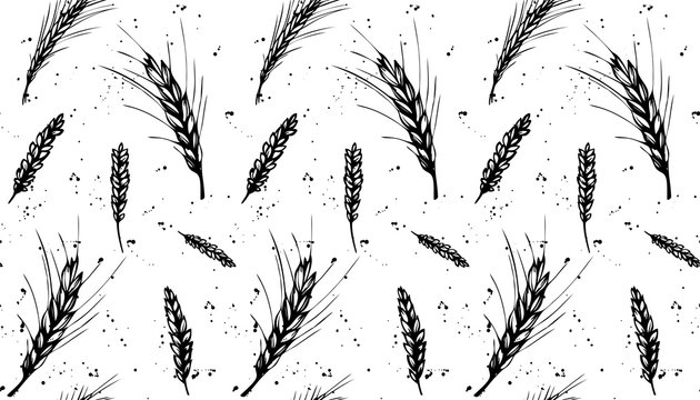 Wheat, rye, barley seamless pattern with drops. Black and white hand drawn design for organic, bakery, cereals