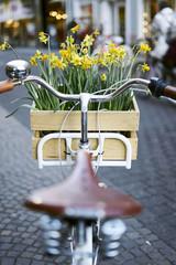 Picknick Fahrrad