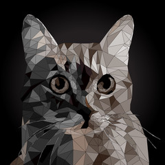 Low poly Vector Portrait of a cool Cat