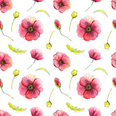 Seamless pattern with poppies on a white background