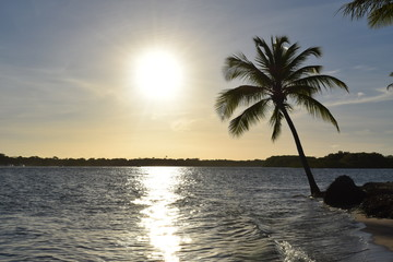 island of boipeba, cairu, bahia, brazil, a paradise on earth