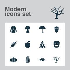 Season icons set with tree, oak nut, stump and other jacket  elements. Isolated vector illustration season icons.