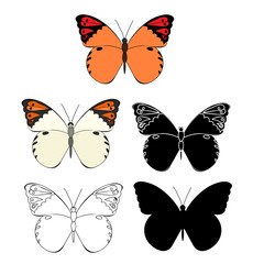 isolated, multicolored butterflies, set