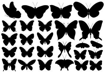 butterfly, black silhouette, set