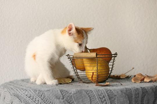 Cute little kitten near basket with pears on table